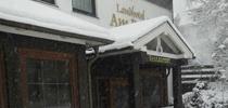 footer-sneeuw